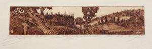 """Landschaft bei Alladorf"" – Stephan Klenner-Otto   Radierung   Maße: 29 x 19  Mindestgebot: 100 Euro   Website: www.kulturatlas-oberfranken.de   Kontakt: S.K-O@gmx.de"